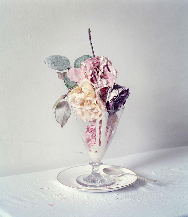 Food meets Art by Tim Walker