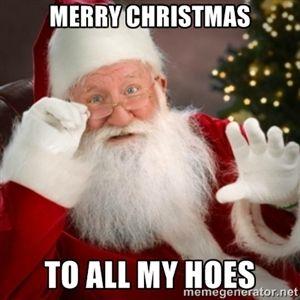 hoes Christmas santa
