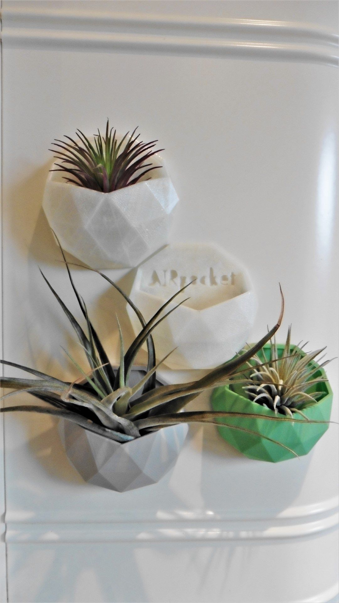 AirPockit Gallery Air plants, Glass mirror, Mirror mounted