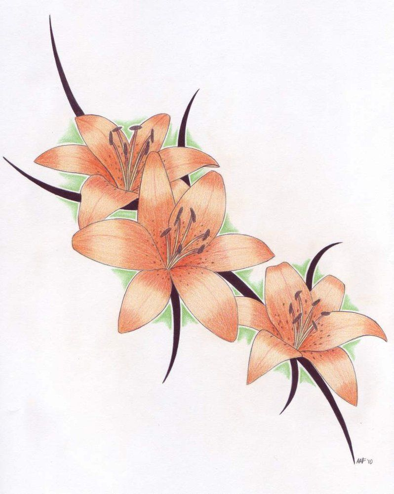 Stunning tiger lily flowers tattoo design tattoos pinterest stunning tiger lily flowers tattoo design dhlflorist Images