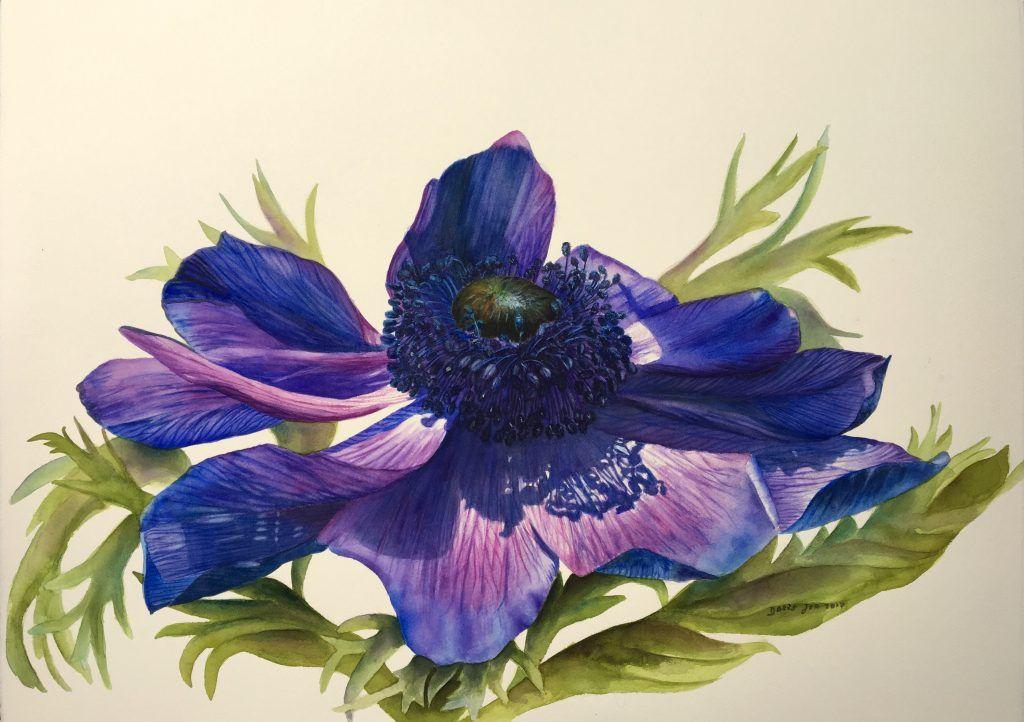 Available Original Paintings Blommor Anemoner