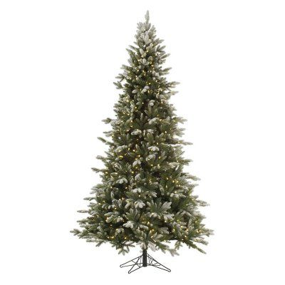 vickerman frosted balsam full pre lit led christmas tree a141646led - Prelit Led Christmas Tree