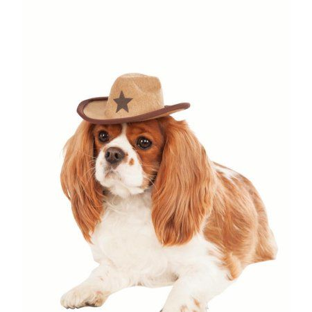 Pet Halloween Brown Cowboy Hat Walmart And Products
