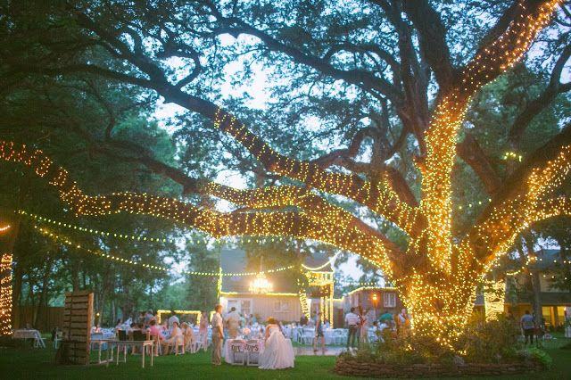 Kaitlin Leigh outdoor wedding light up tree oak tree manor ...
