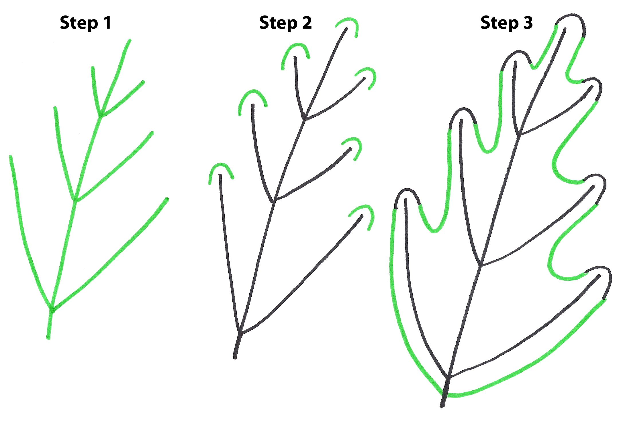 How To Draw Simple Leaves Step By Step Art And Joy Fall Drawings Leaf Drawing Fall Leaves Drawing