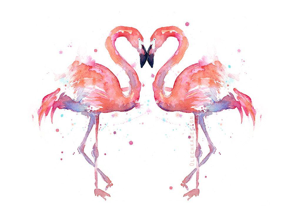 Resultado de imagem para flamingo