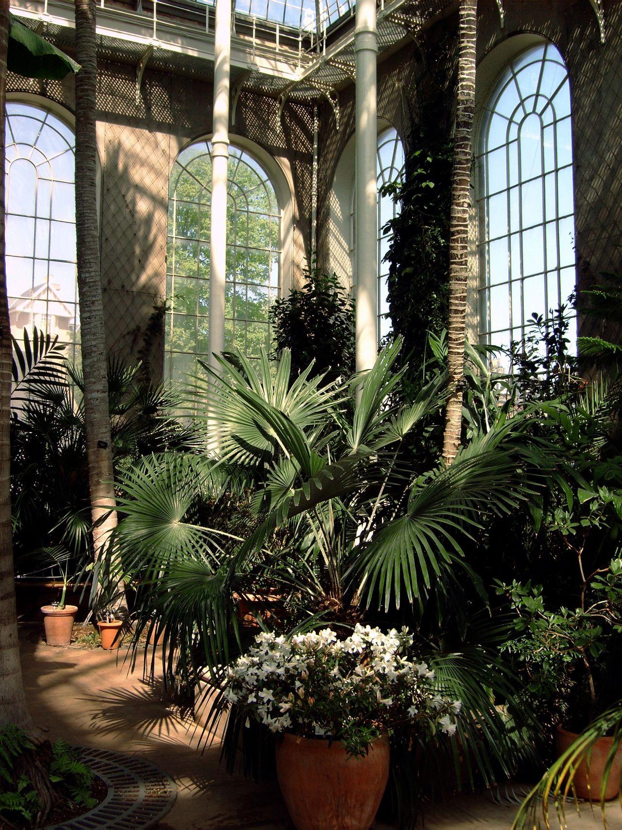 Cityhoppersgarden glasshouse experience at botanic for Garden trees scotland