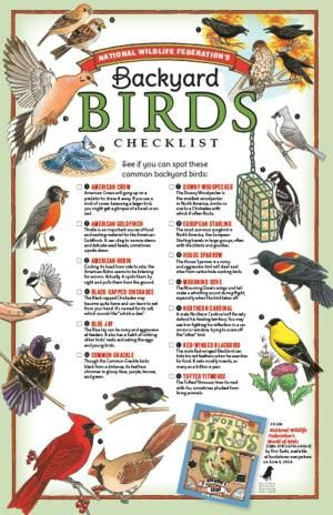 Backyard Birds Checklist   Downloadable Printable   This Is A Fun Way For  The Kiddos To