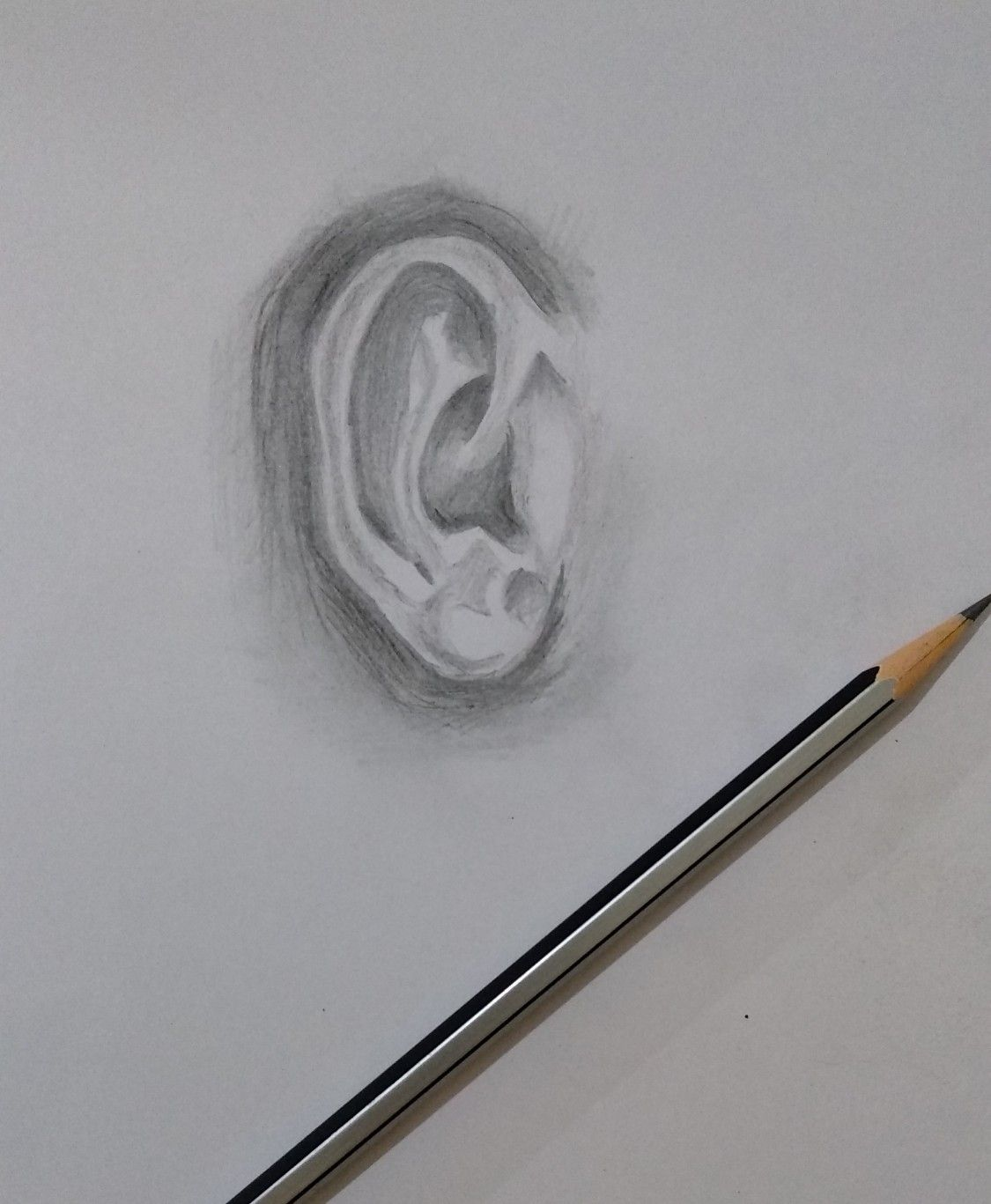 realistic ear pencil art pencil sketches drawings how to ...