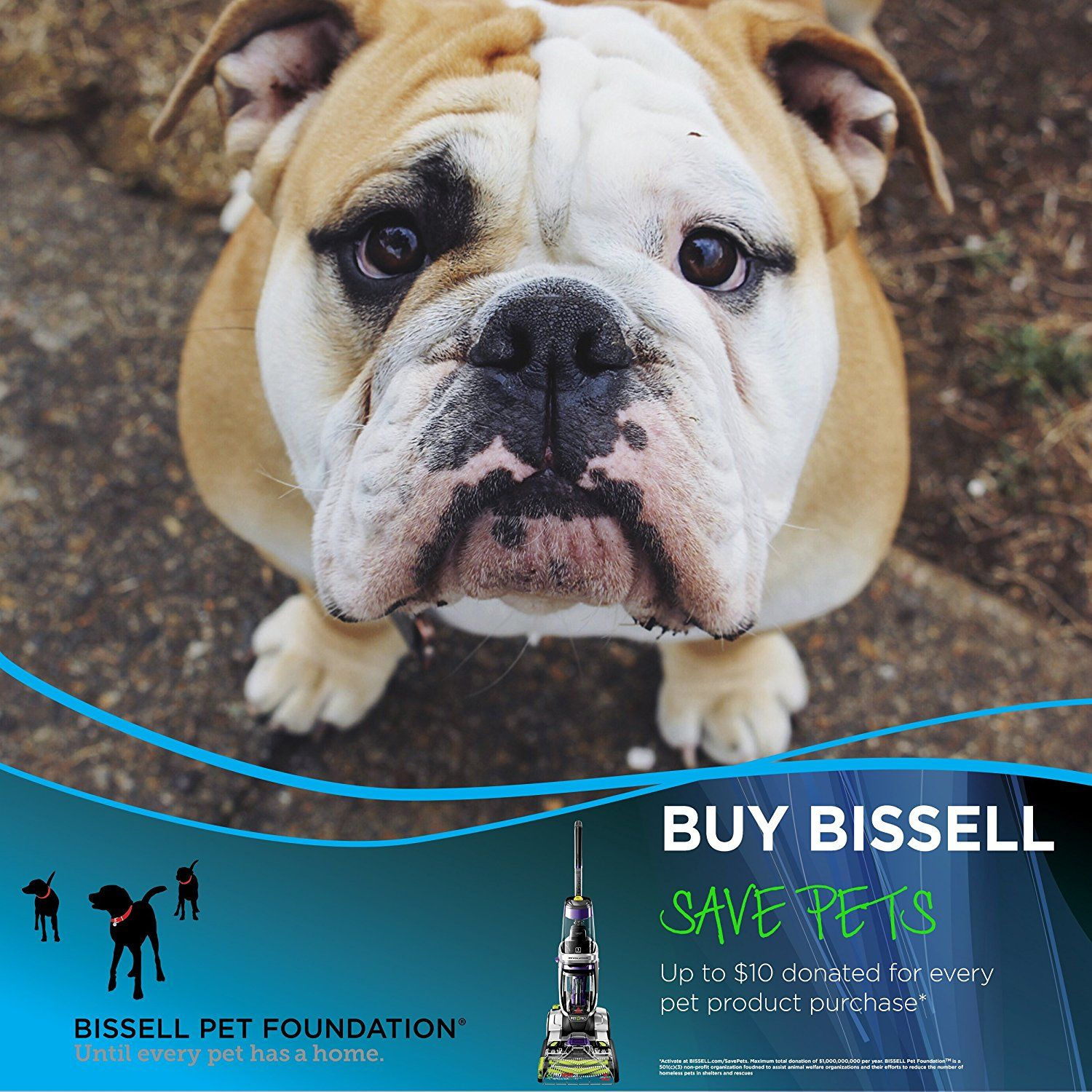 Product Review BISSELL ProHeat 2X® Revolution™ Pet Pro
