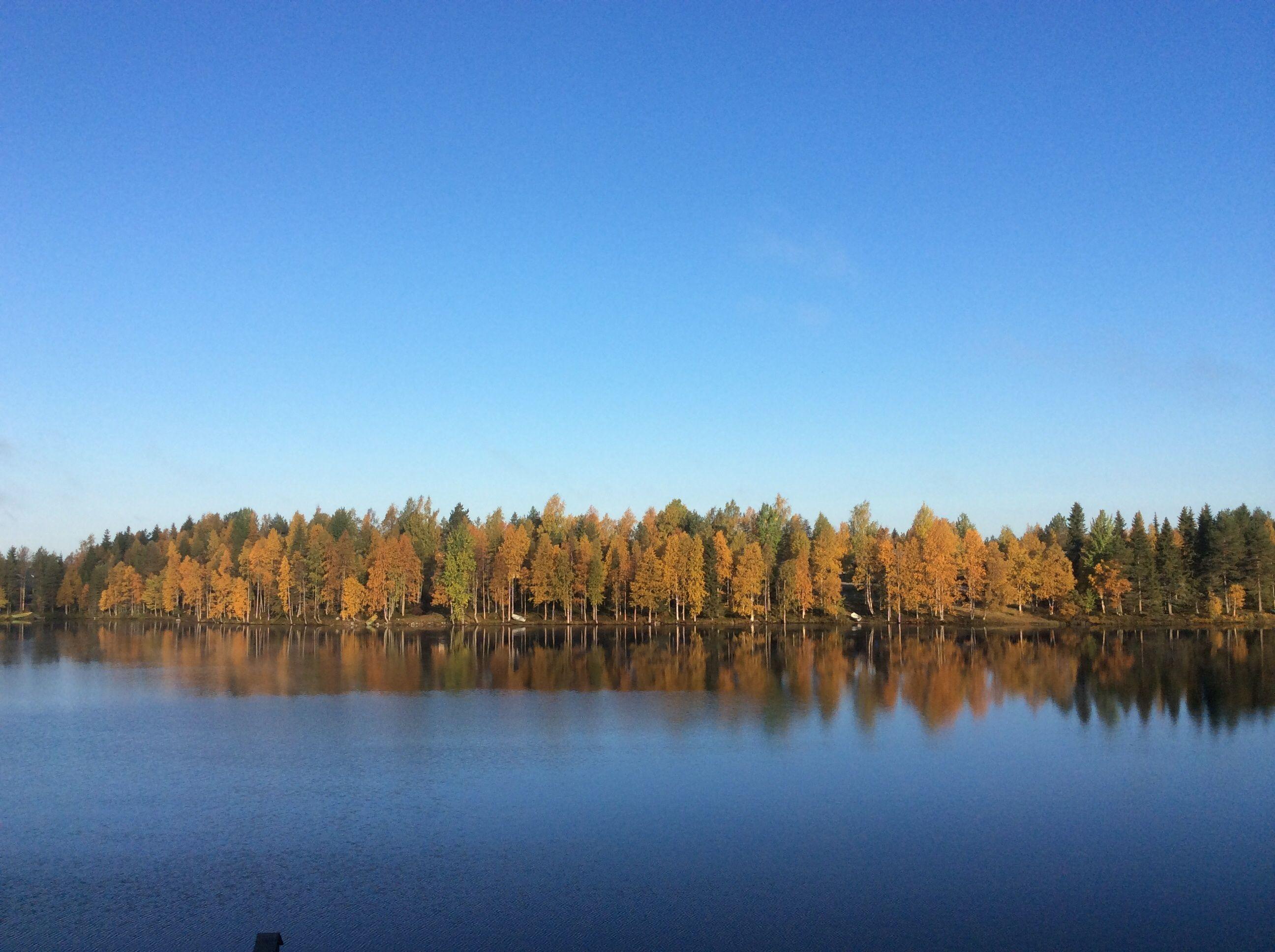 Kuusamo. Syyskuu 2014.