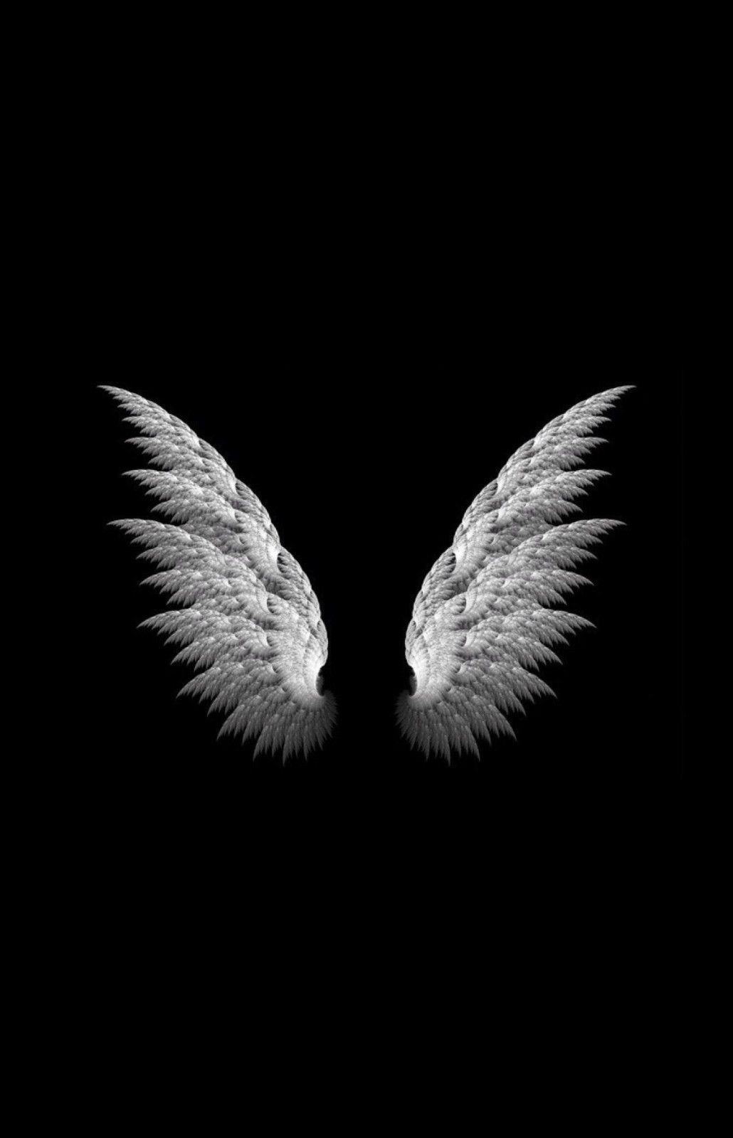 Framed print white angel wings on a black background picture poster art