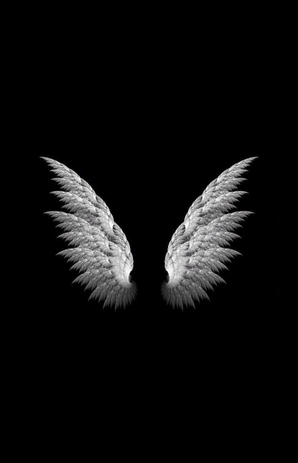 framed print white angel