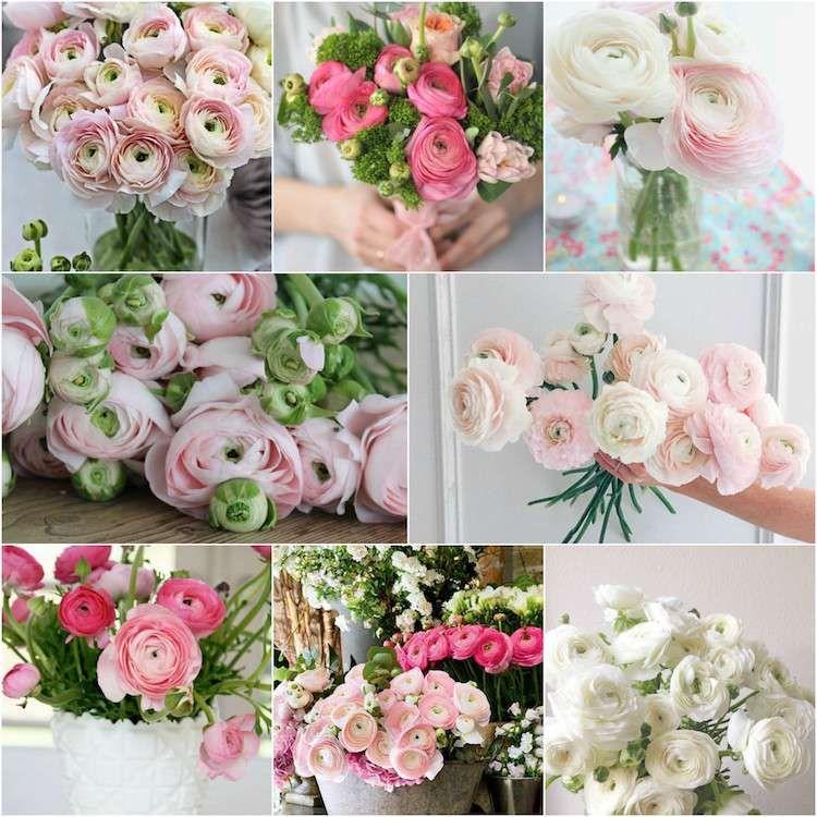 Ranunkeln Blumen Hochzeit Fruhjahr April Mai Juni Wedding Flowers