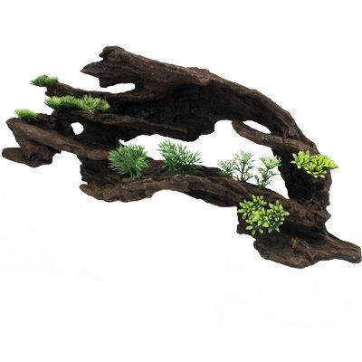 Large hollowed out driftwood a natural looking ornament for Tall fish tank decorations
