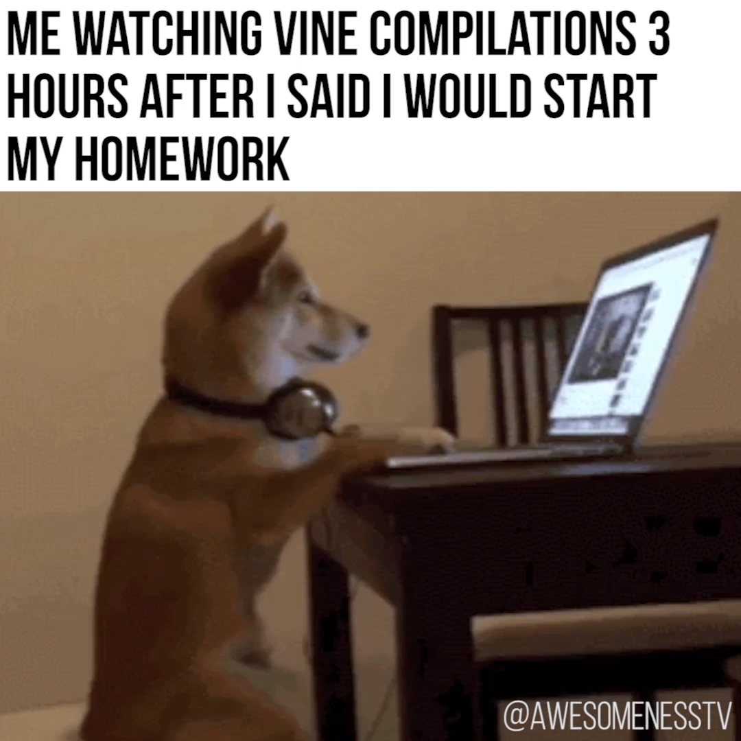 Me Watching Vine Compilations 3 Hours After I Said I Would Start My Homework Video Vine Compilation Funny Memes Sayings