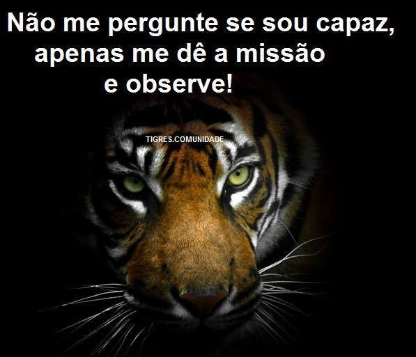 frases de tigres comunidade on Pinterest | Leis, No Face