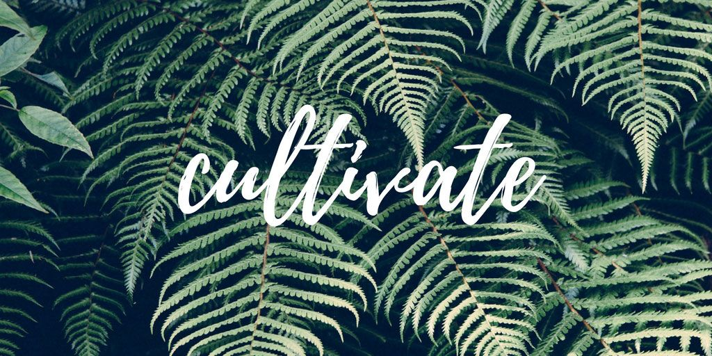 My Word for 2017 Nature prints, Macbook air wallpaper