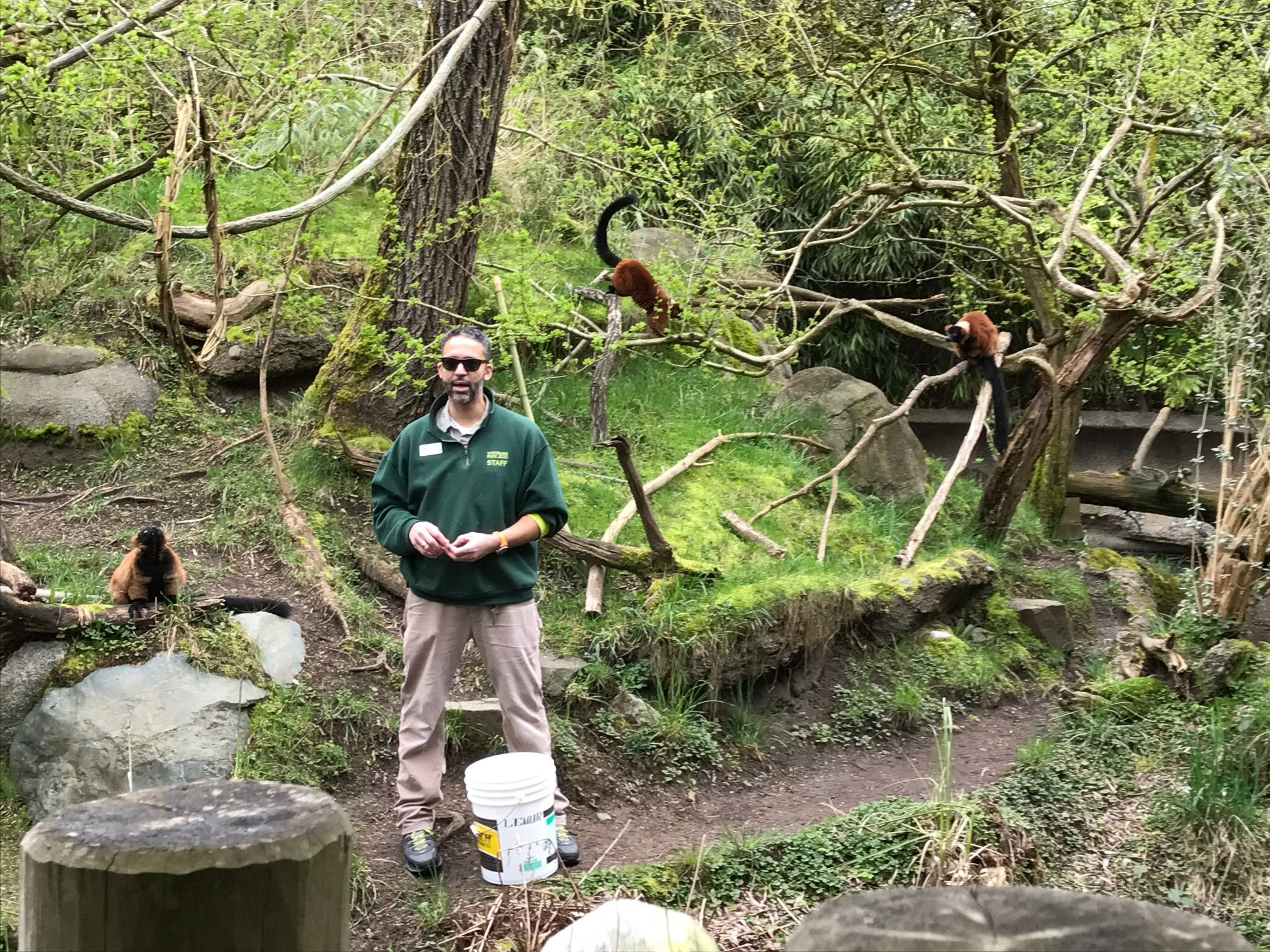 Nick Sutton Tropical Forest Specialist At Woodland Park Zoo Seattle Feeding A Family Of Lemurs Www Edenprojects Woodland Park Zoo Zoo Keeper Tropical Forest
