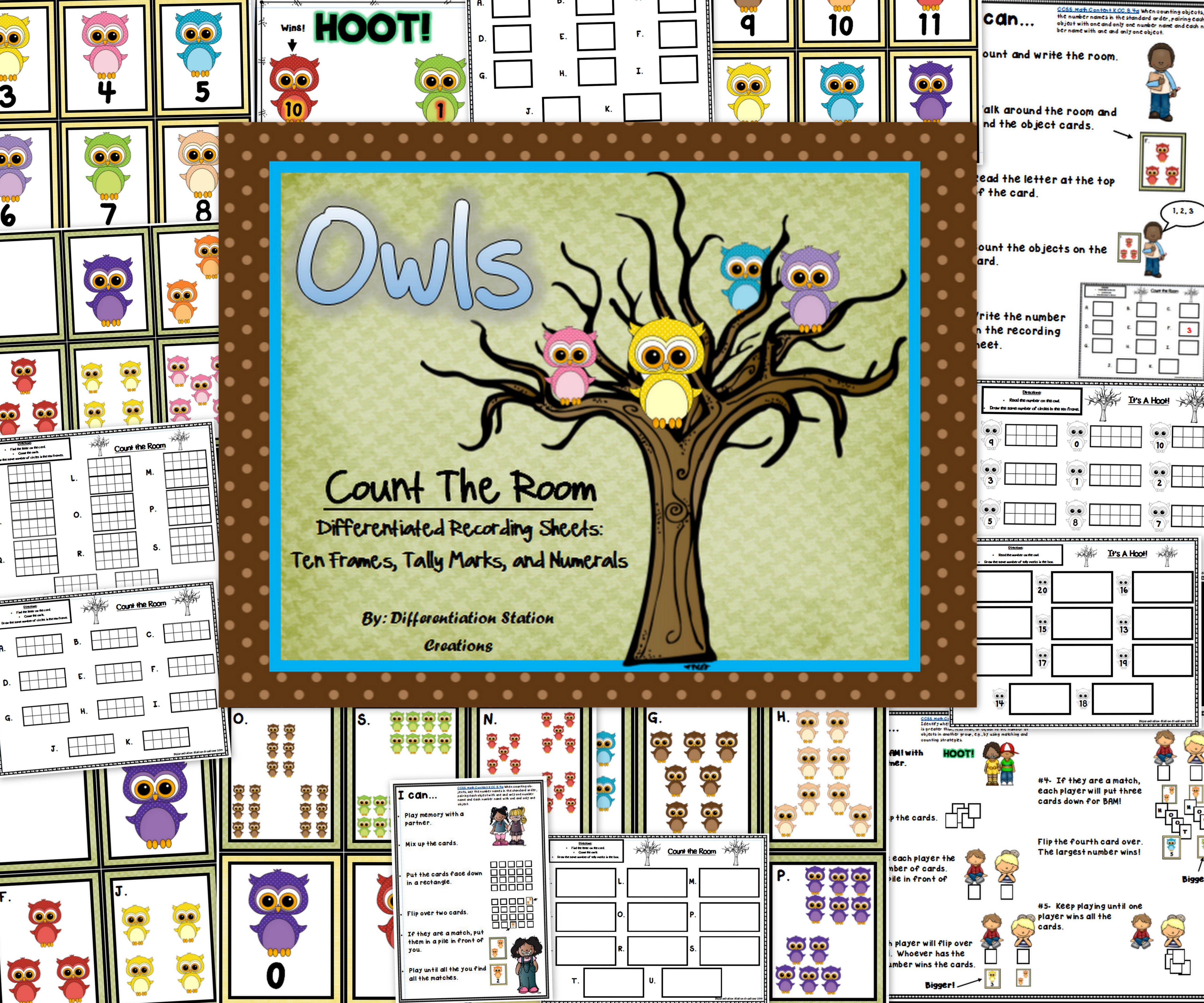 Count The Room Owls