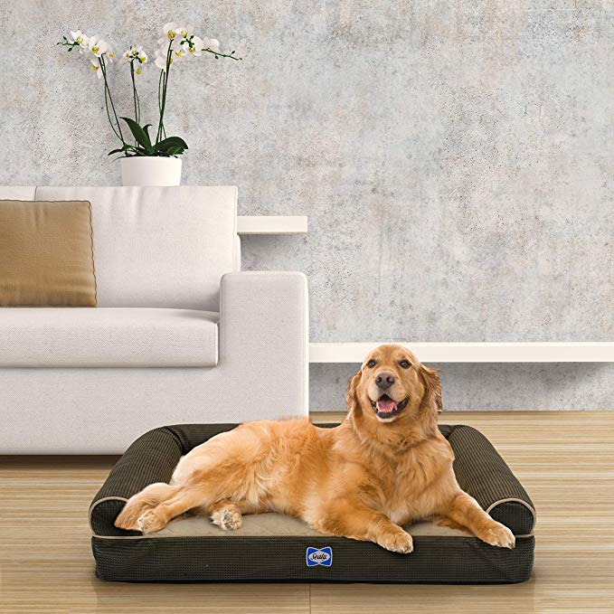 Sealy Ultra Plush SofaStyle Bolster Dog Bed
