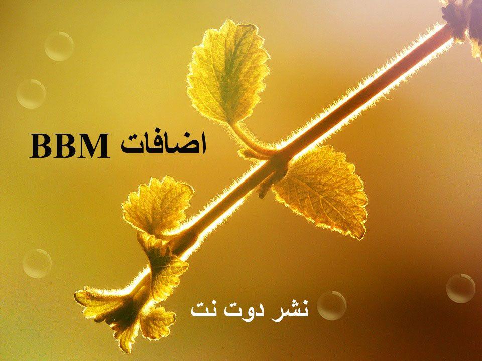 اضافات Bbm سريعة مع افضل موقع اضافات ببي Bbm للبلاك بيري ونشر البن كود البلاك بيري نشر بن كود حقي إذا هذا هو ما تحتاج إليه من نشر واض Plants Flowers