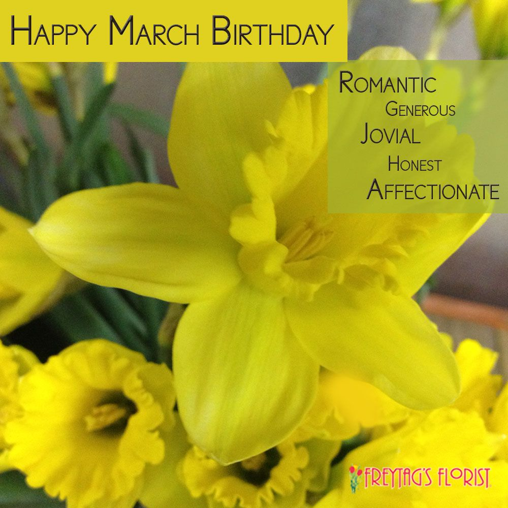 Happy March Birthday Sun Shiny Daffodils Are Your Flower The