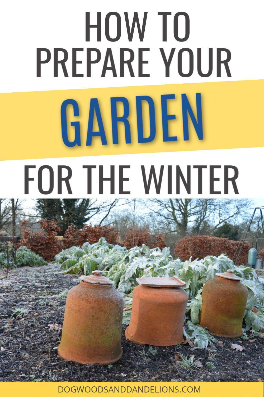 bdc9b97d797146909cf0565ef94ca4dd - How To Prepare Georgia Soil For Gardening