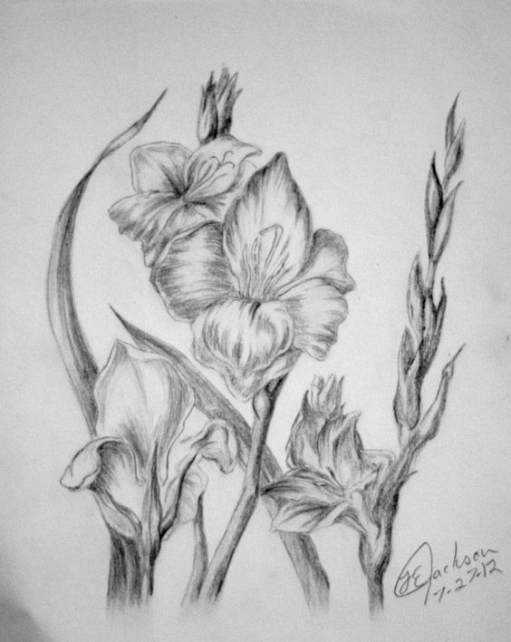 Gladiolus Flower Tattoo Black And White Gladiolus By Unique With Images Gladiolus Flower Tattoos Birth Flower Tattoos Gladiolus Flower