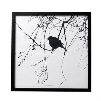 Tämä Bloomingvillen tyylikäs mustavalkoinen lintutaulu toimitetaan kehystettynä. Aseta se hyllylle tai ripusta seinälle tunnelmaa luomaan.