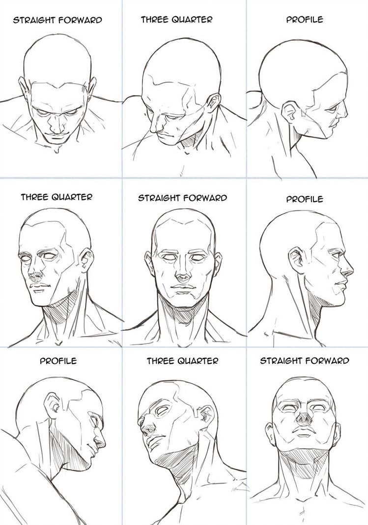 Human Head Sheet by Hoelho on DeviantArt