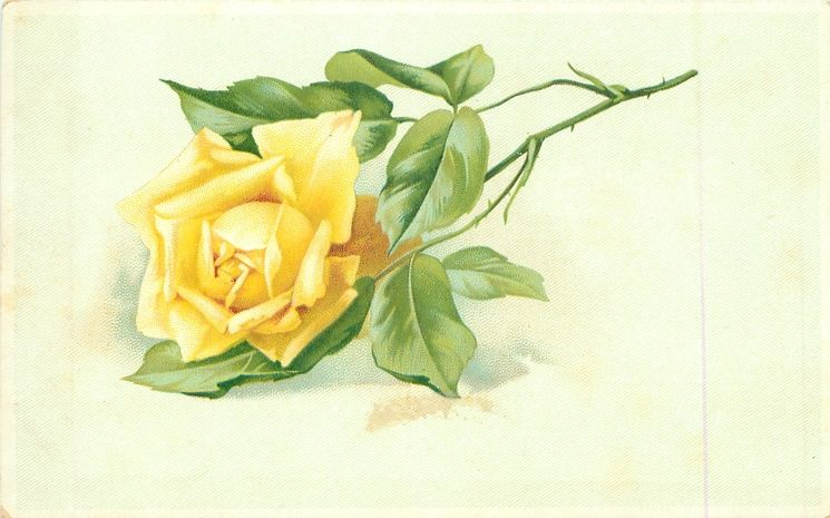 Single Rose Clipart: Single Yellow Rose Stalk To Right