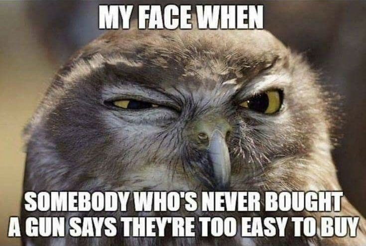 Funny Memes For Lovers : Yep made me smile pinterest guns politics and truths
