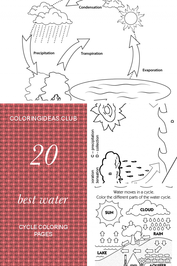 20 Best Water Cycle Coloring Pages Coloring pages, Water