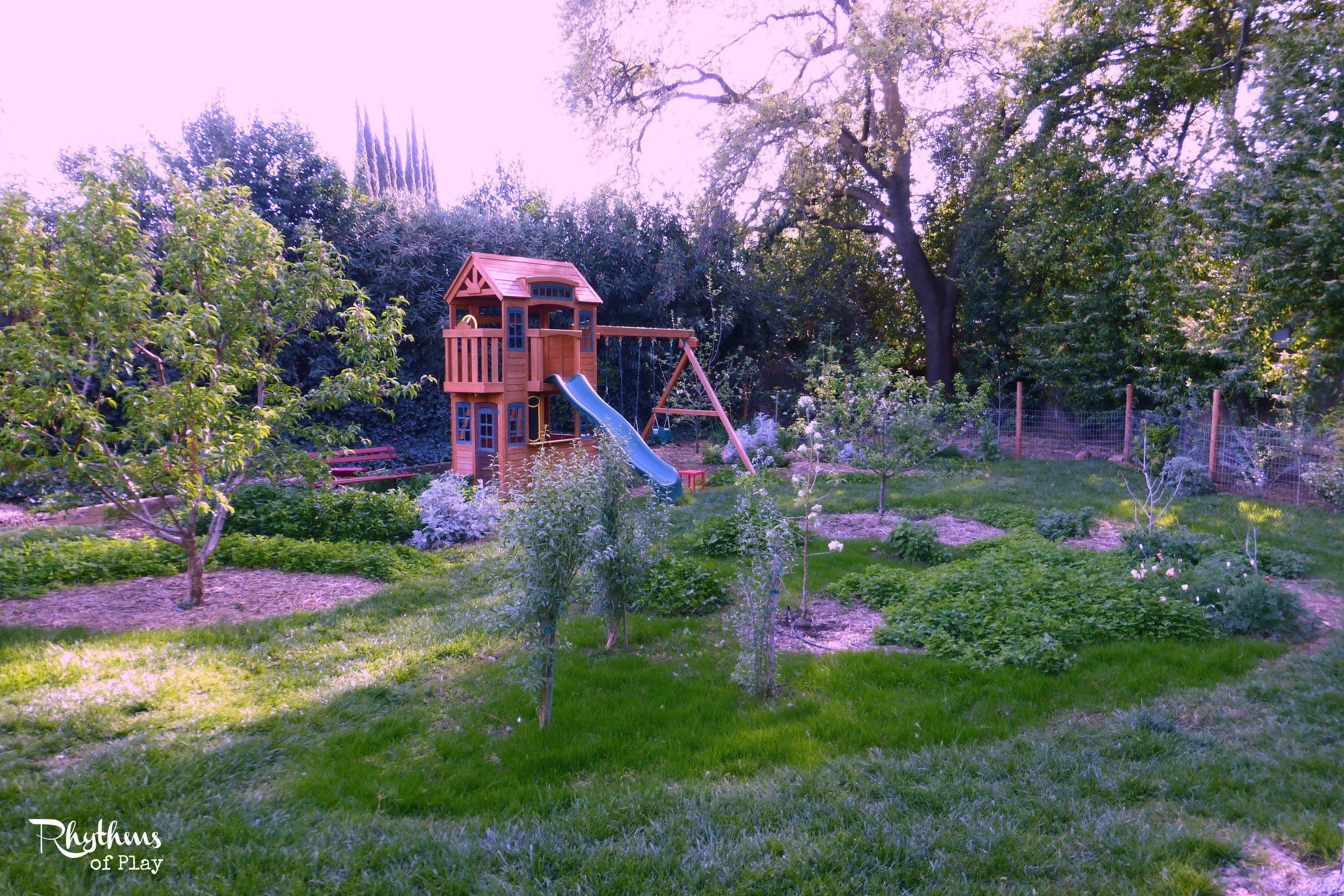 beautiful backyard orchard google search beautiful backyard
