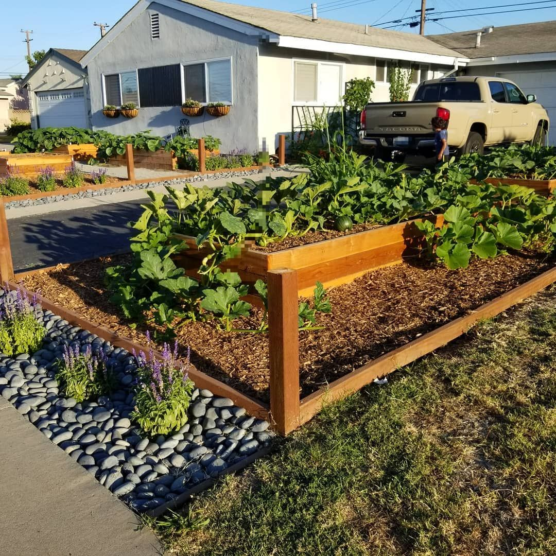 5 Easy DIY Raised Garden Bed Ideas and Plans   Raised ...