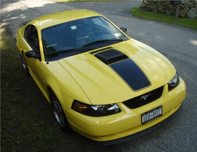 Rsztalon S Image 2003 Mustang Mach 1 Mustang Mach 1 Mustang Cobra