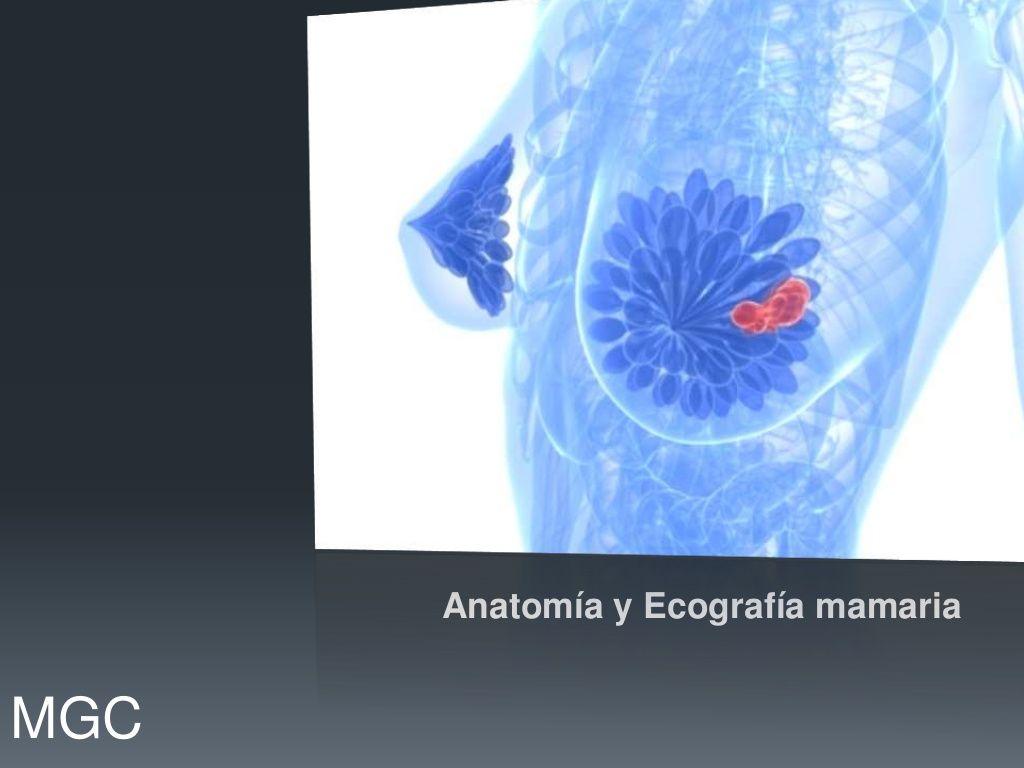Ecografia mamaria by Imagenes Haedo via slideshare Pet