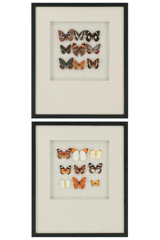 Butterfly Art via 6th Street Design School