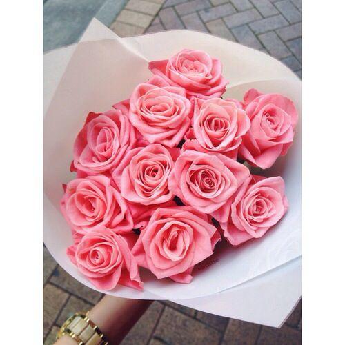 ♫ romantic pink roses  .. X ღɱɧღ ||