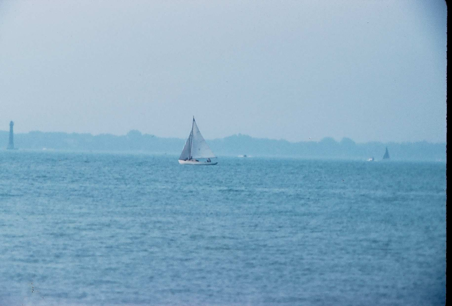 Sailboats Lake St Clair