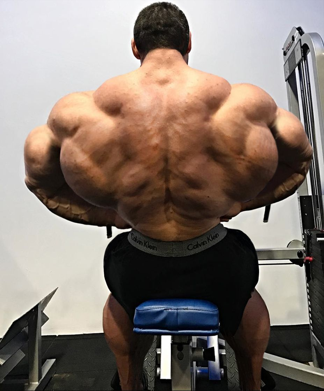 Muscle Morphs by Hardtrainer01 : Photo | Bodybuilders men ...