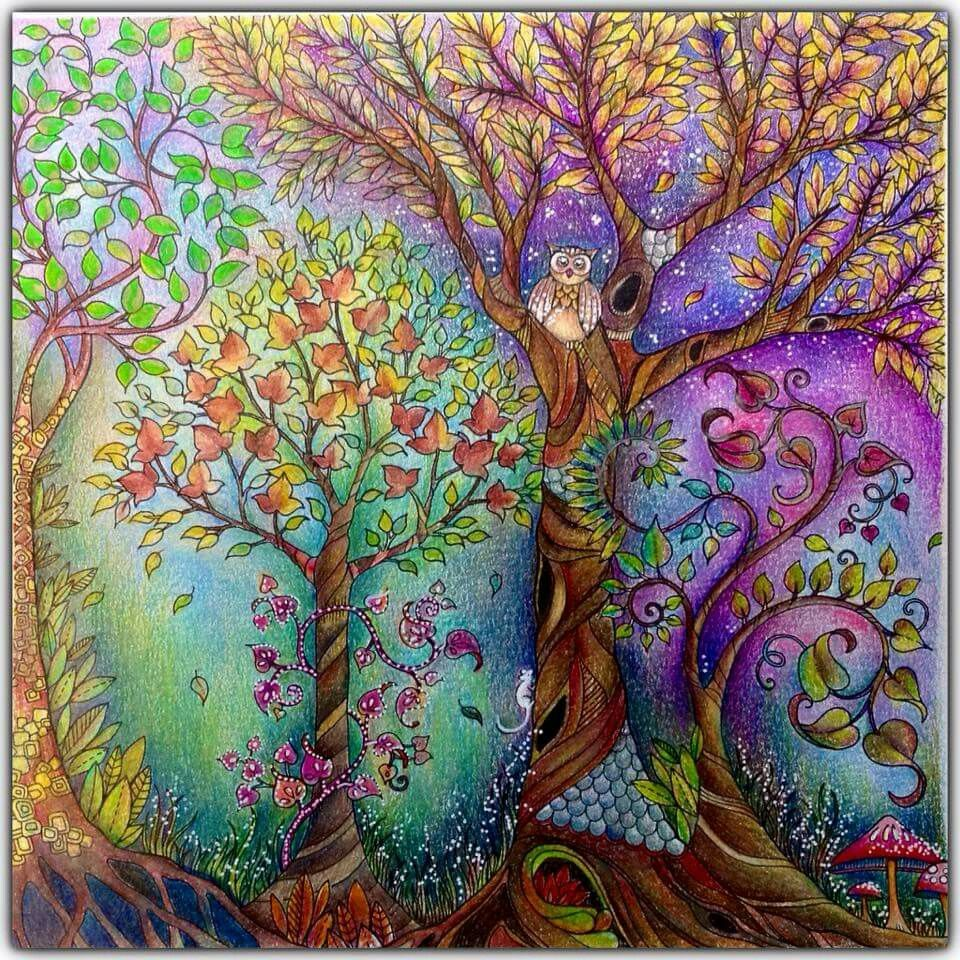 Pin by amy rieger on Coloring Enchanted forest coloring