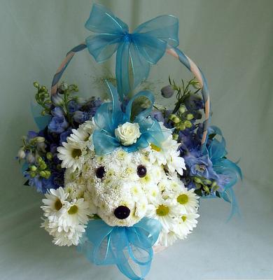Perrito de con listones celestes.. Mascotas florales.