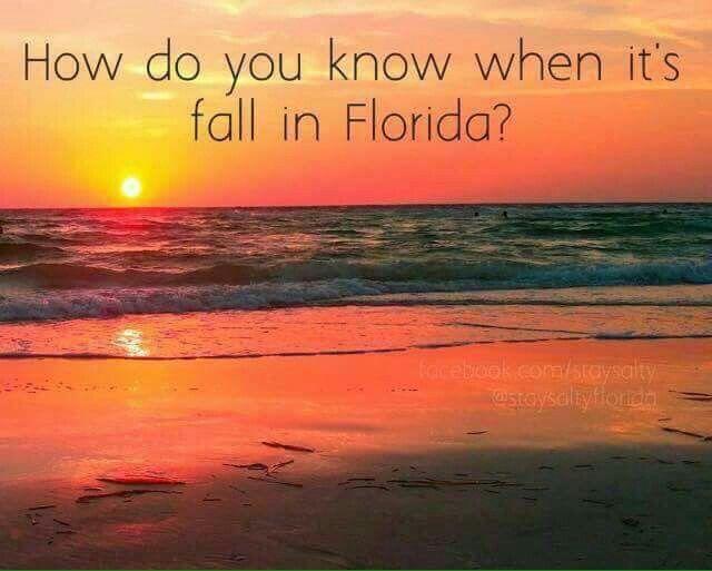 Find Daytona Beach Shores Condos For Sale At http://beachbumrealty.net
