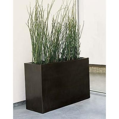 Tall Planter W Grass Instead Of Privacy Screen Contemporary Planters Rectangular Planter Box Planter Boxes