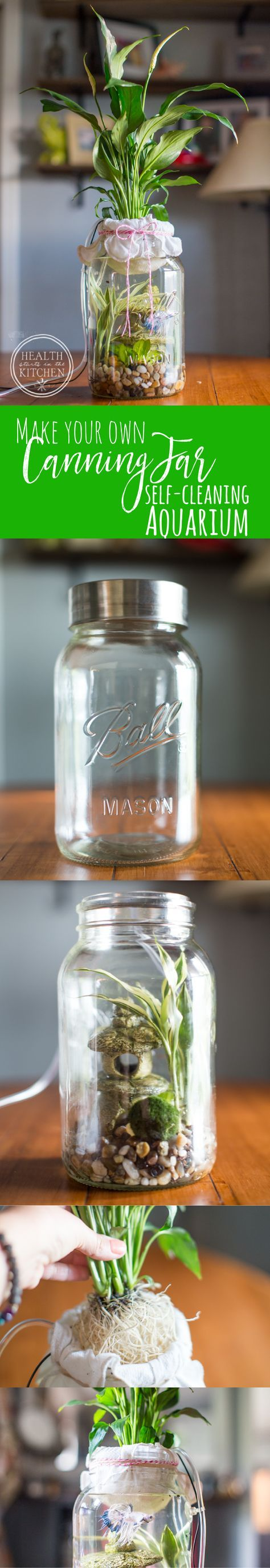 Omg this is adorable make your own diy canning jar self cleaning