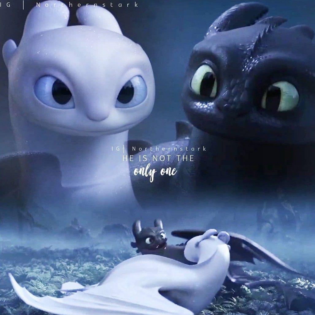 Banguela E Furia Da Luz How To Train Dragon How Train Your