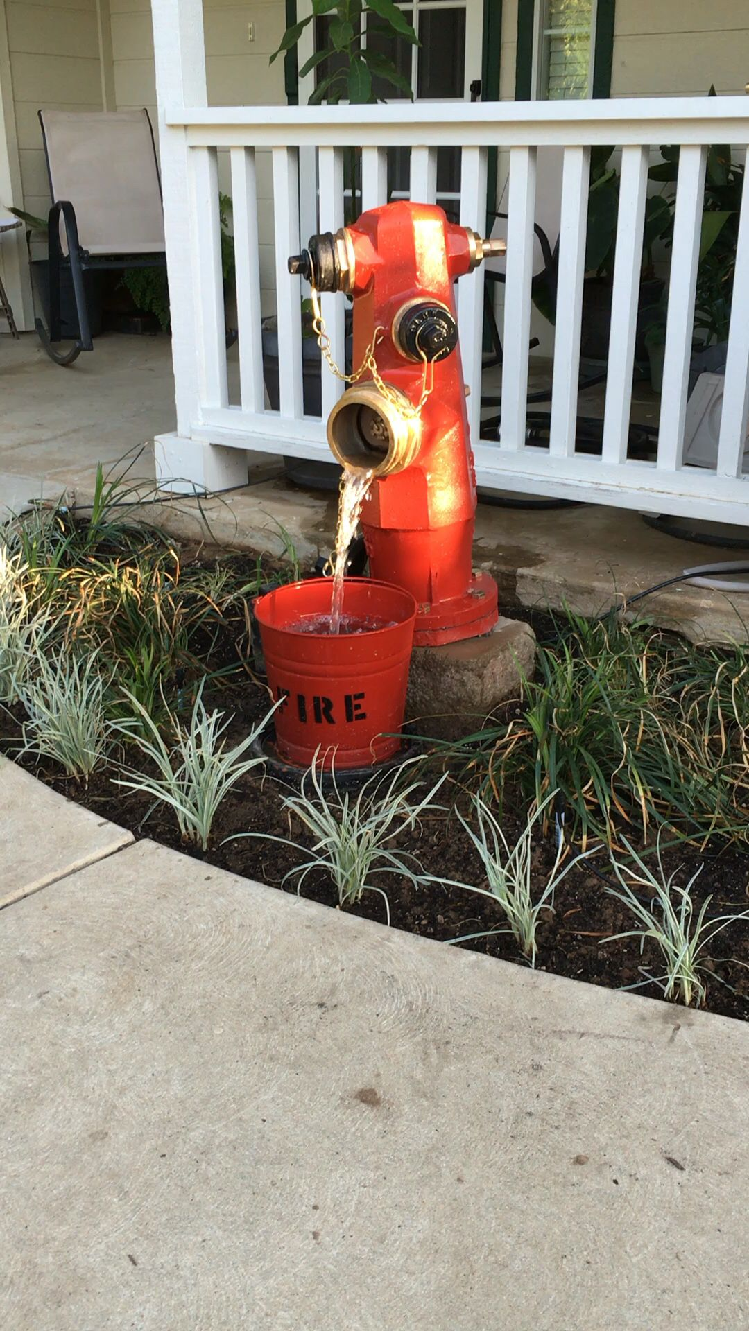 How To Effectively Deal With Pond Fish Problems Fire Dept Decor