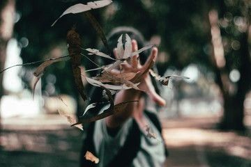 #affiliate #throwing #leaves #woman #park #dry #in #adWoman Throwing Dry Leaves In Park ,Woman Throwing Dry Leaves In Park ,  150+ Epic Free Photoshop Brushes  Taozipie's Photoshop Brush Set Pack 投稿者  taozipie All the Photoshop brushes I've made so far!  [Link in Bio] I FINALLY put up my Photoshop brush pack for sale on Gumroad! 💙 These are all the brushes I've collected over the years and…  416 stunning, realistic Photoshop Brushes for Oil & Acrylic Painting and Canvas. Also foliage, ...